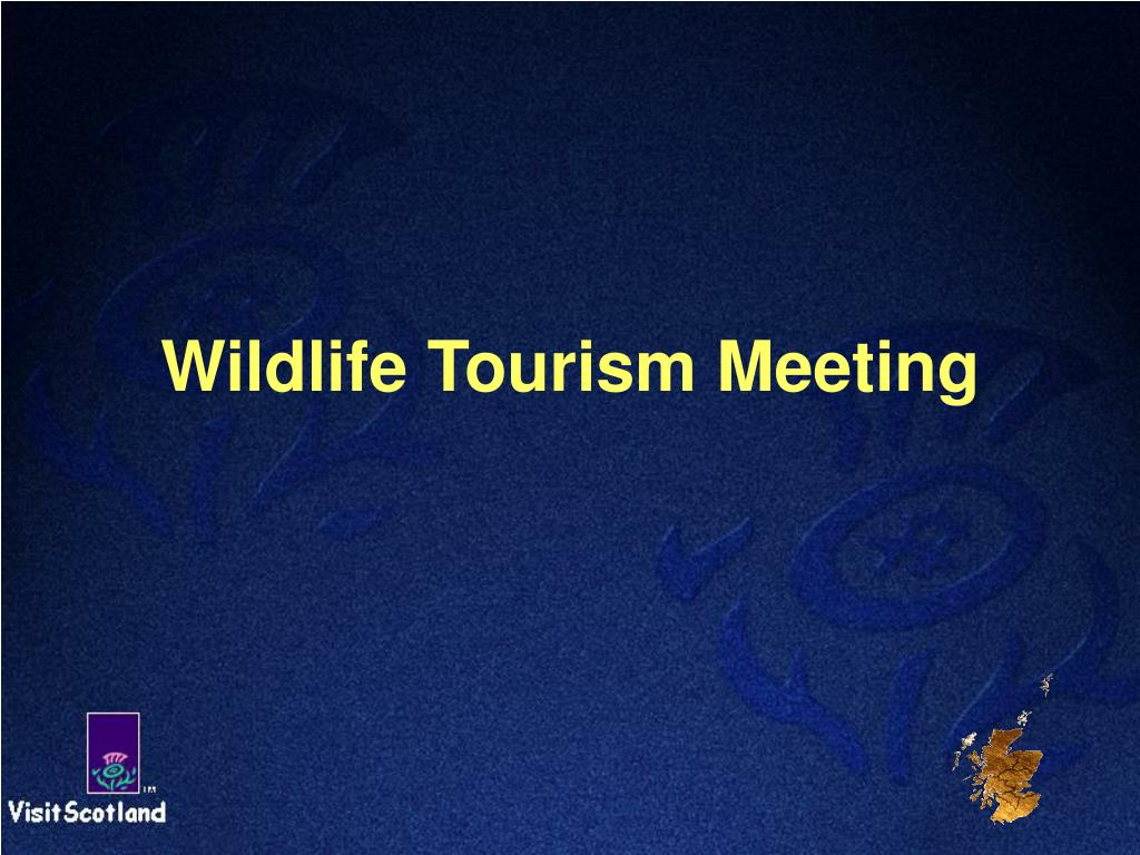 wildlife tourism meeting
