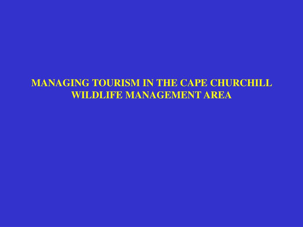 MANAGING TOURISM IN THE CAPE CHURCHILL WILDLIFE MANAGEMENT AREA