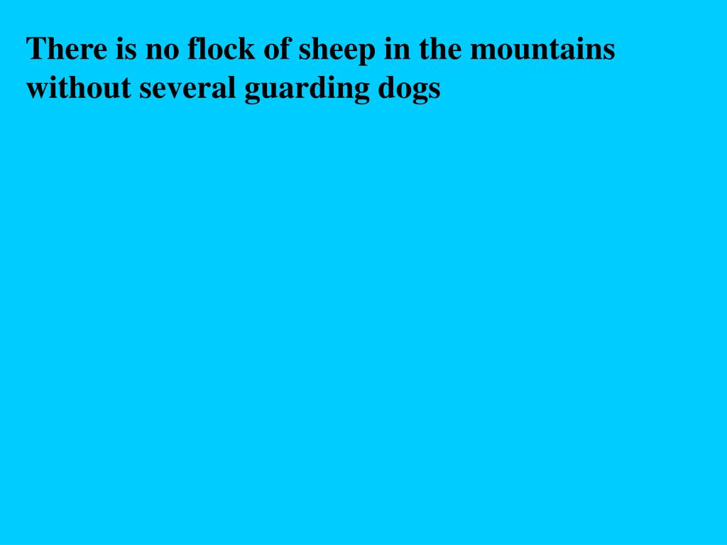 There is no flock of sheep in the mountains without several guarding dogs