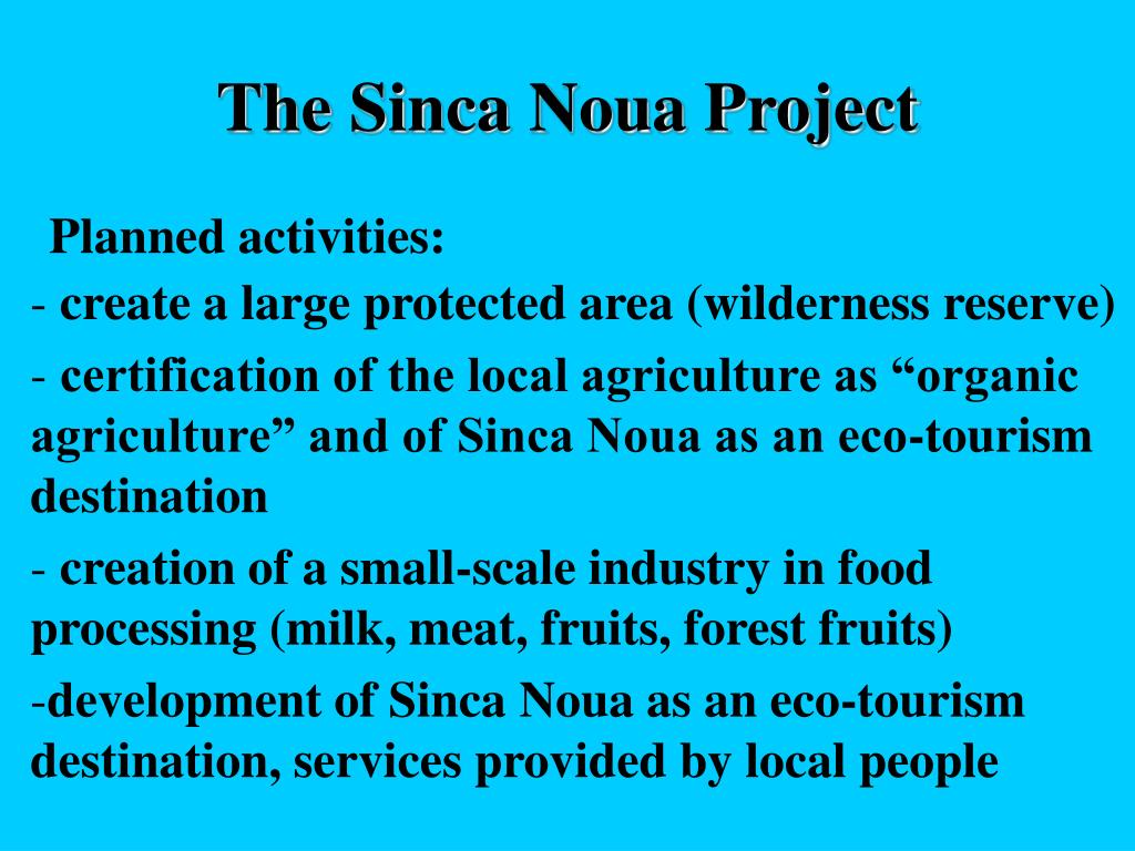 The Sinca Noua Project