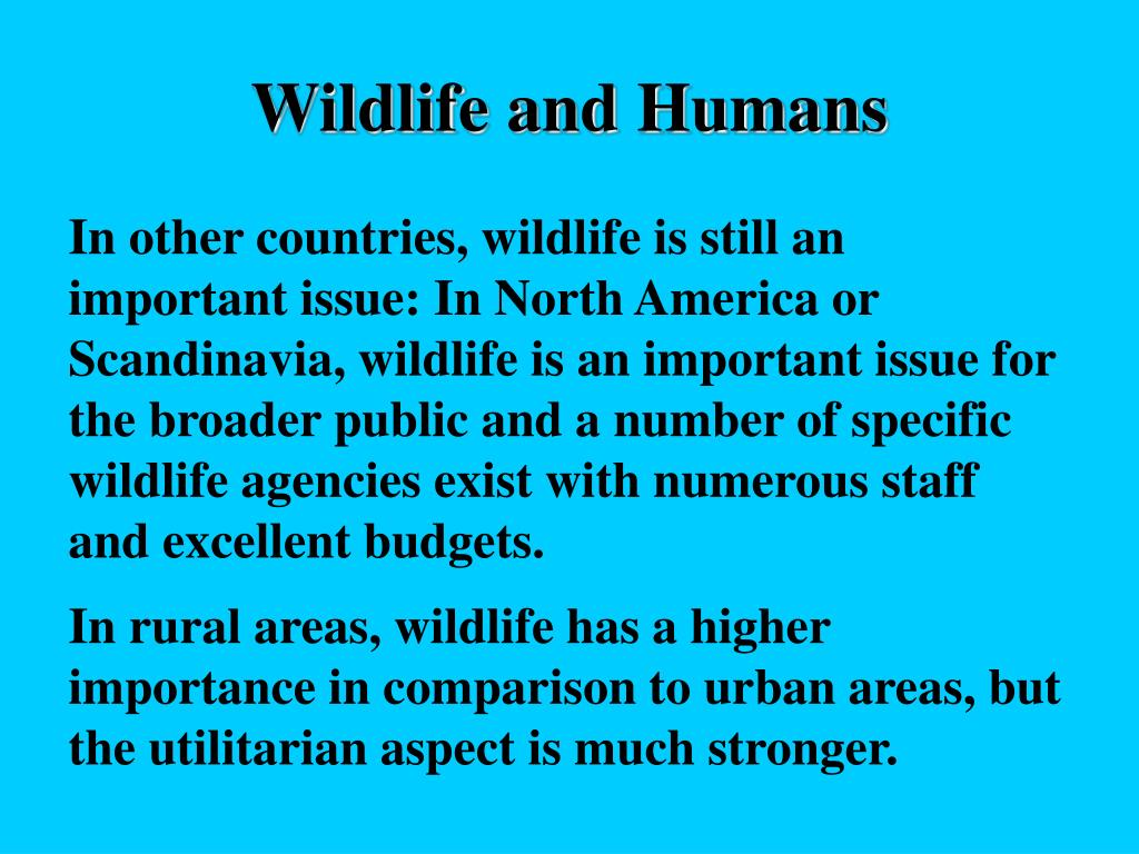 Wildlife and Humans