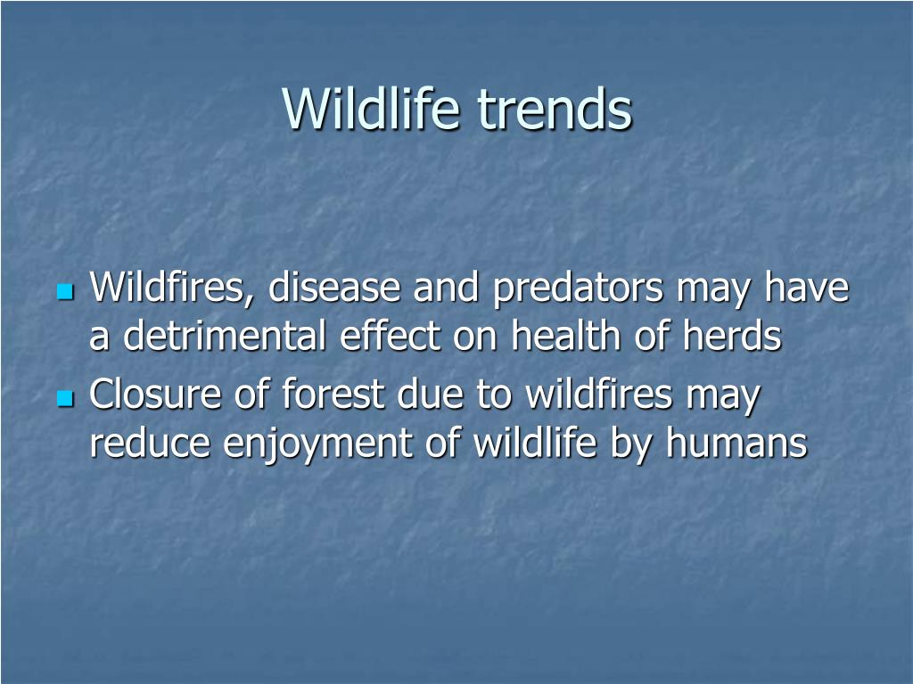 Wildlife trends