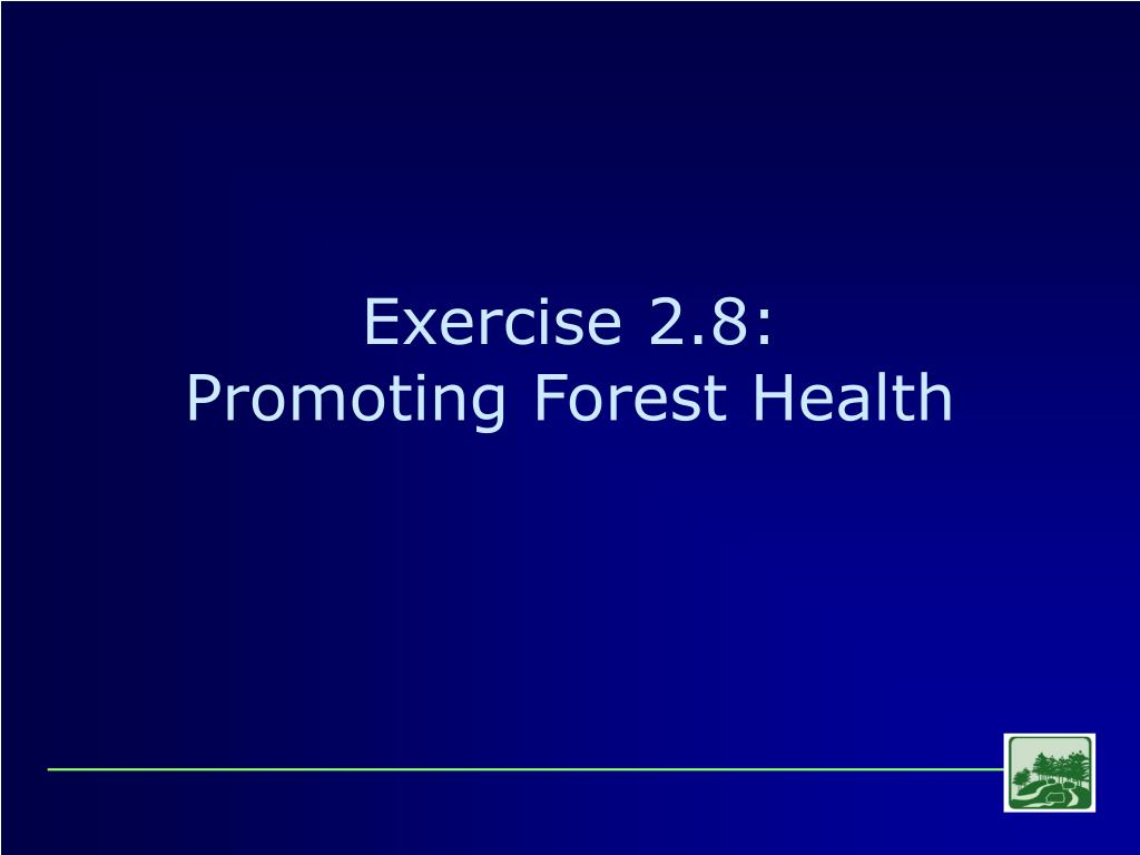 Exercise 2.8: