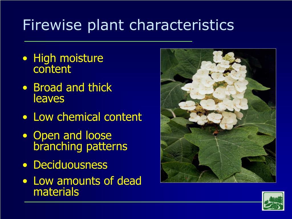 Firewise plant characteristics