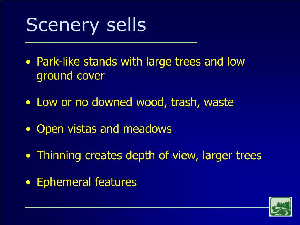 Scenery sells