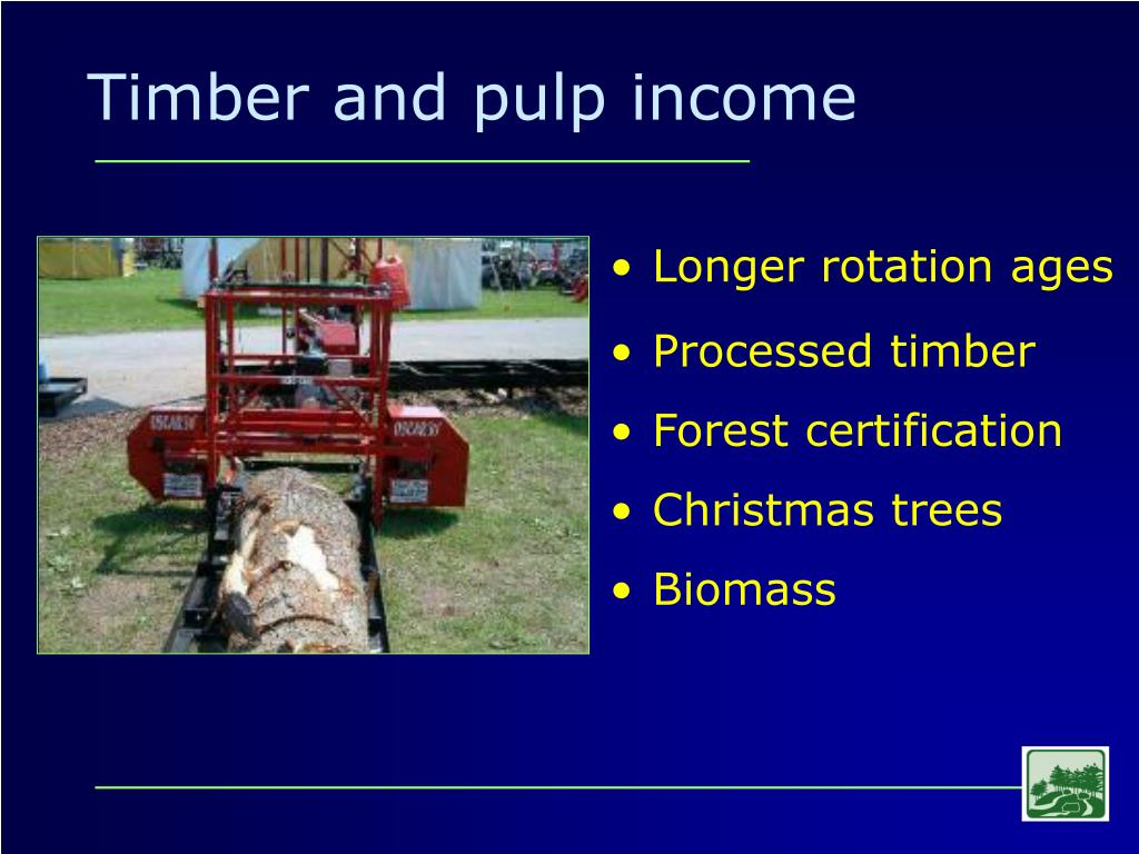 Timber and pulp income