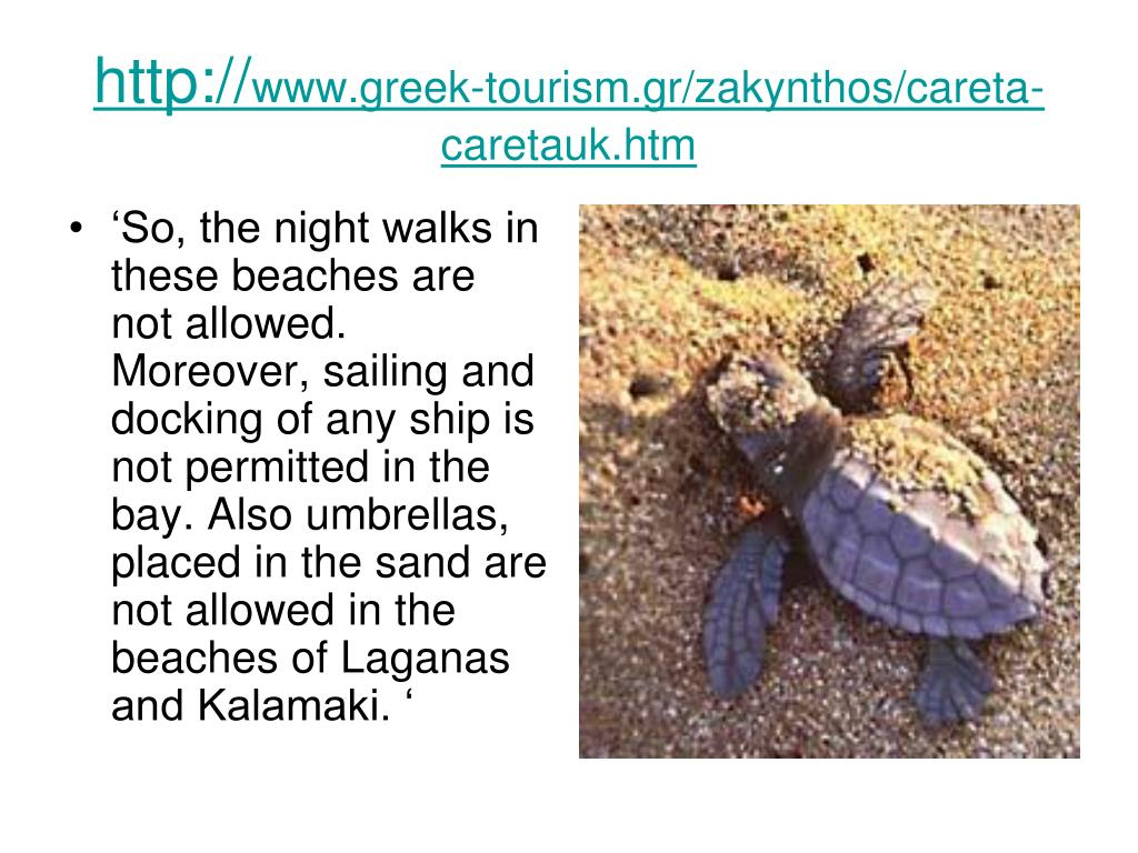 'So, the night walks in these beaches are not allowed. Moreover, sailing and docking of any ship is not permitted in the bay. Also umbrellas, placed in the sand are not allowed in the beaches of Laganas and Kalamaki. '
