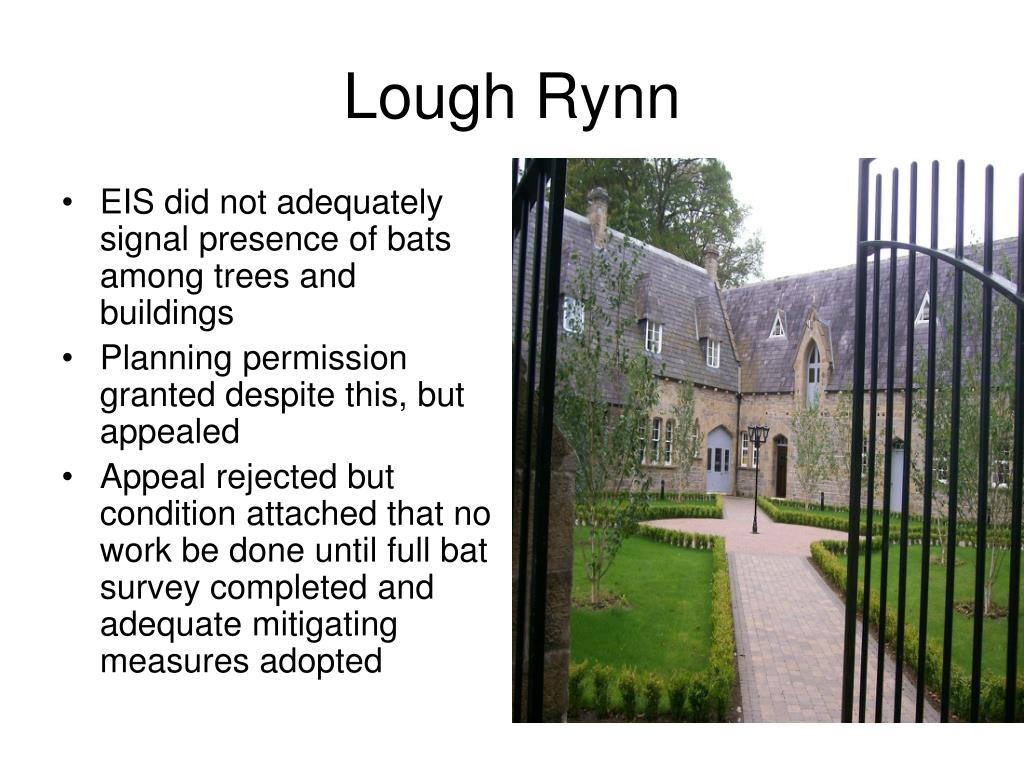 EIS did not adequately signal presence of bats among trees and buildings