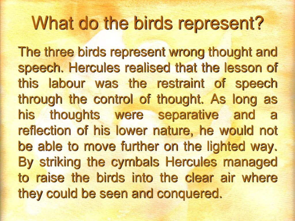 What do the birds represent?