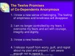 the twelve promises of co dependents anonymous