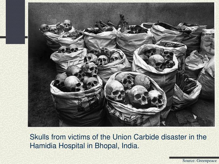 Skulls from victims of the Union Carbide disaster in the Hamidia Hospital in Bhopal, India.