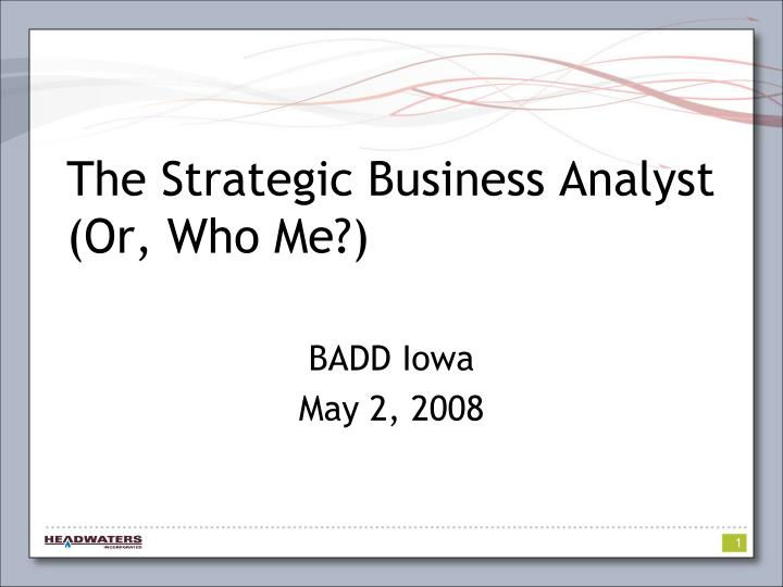 The strategic business analyst or who me