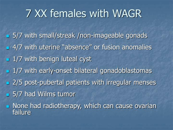 7 XX females with WAGR