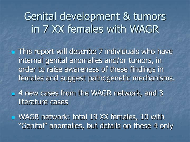 Genital development & tumors