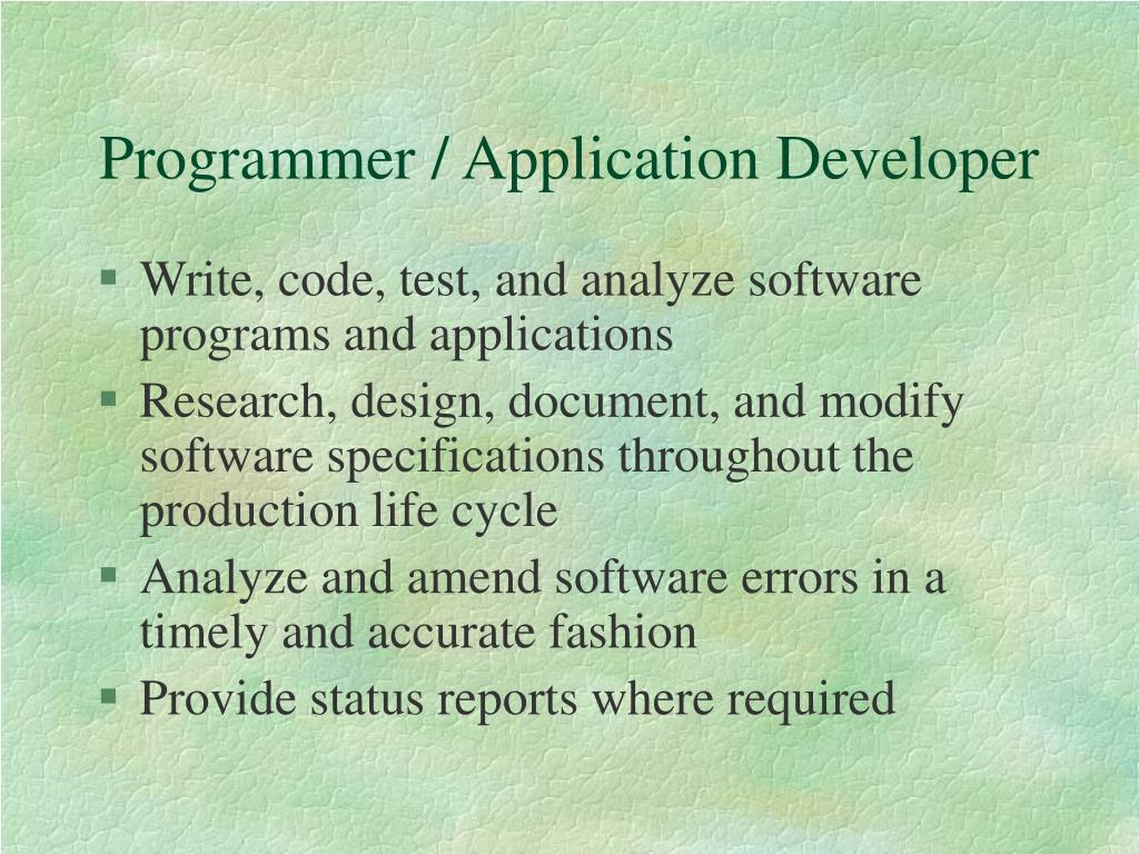 Programmer / Application Developer