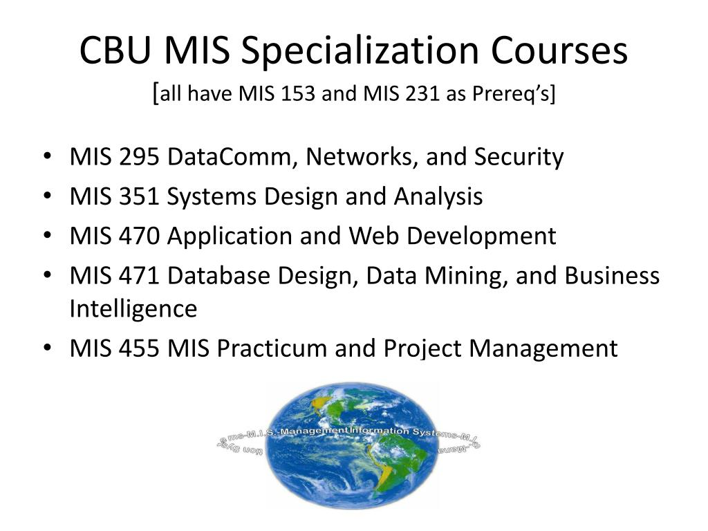 CBU MIS Specialization Courses