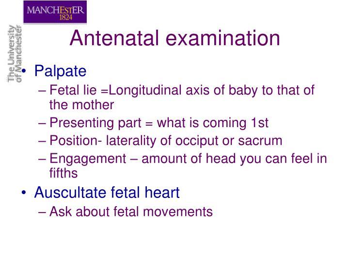 Antenatal examination