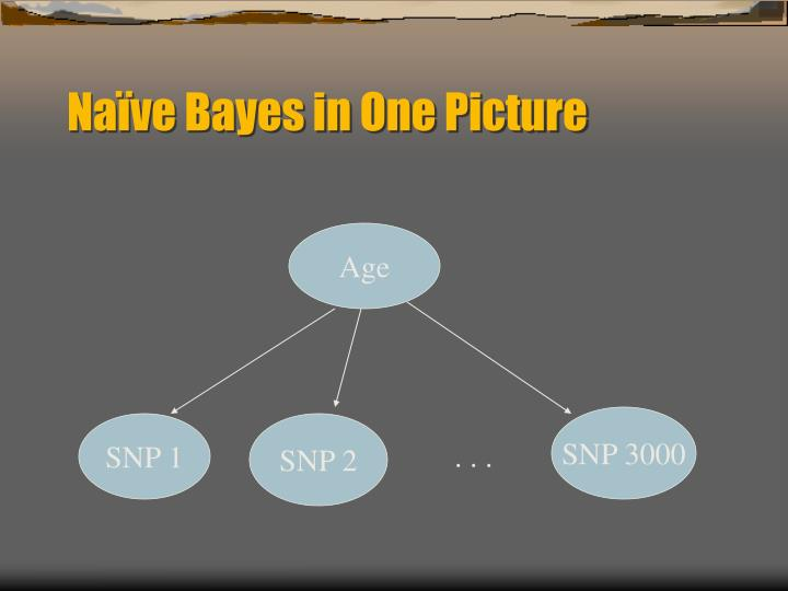 Naïve Bayes in One Picture