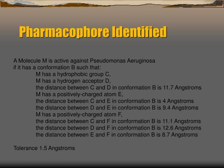 Pharmacophore Identified