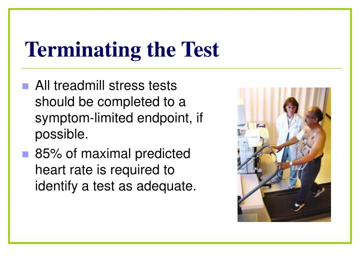 Terminating the Test
