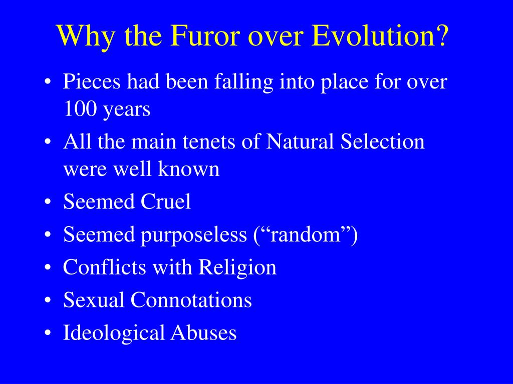 Why the Furor over Evolution?