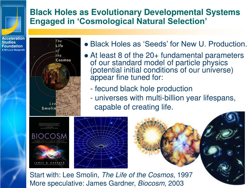 Black Holes as Evolutionary Developmental Systems Engaged in 'Cosmological Natural Selection'