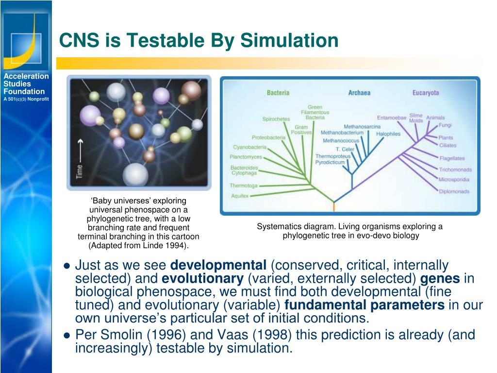 CNS is Testable By Simulation
