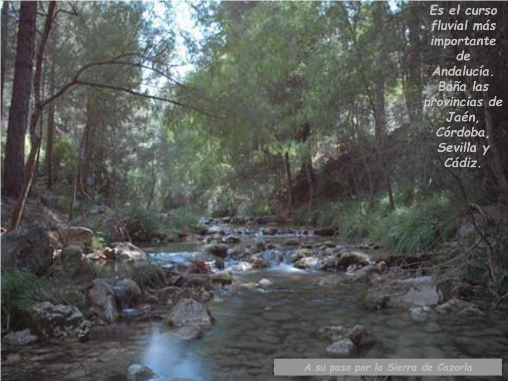Es el curso fluvial más importante de Andalucía.