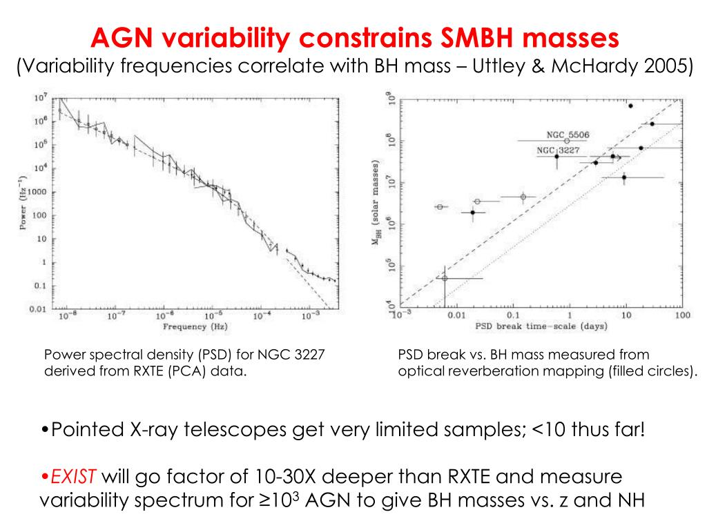 AGN variability constrains SMBH masses