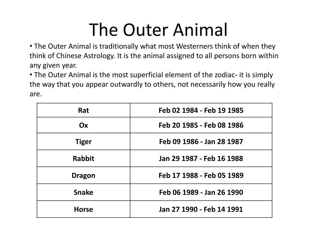 The Outer Animal