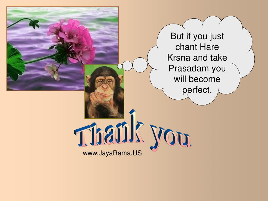 But if you just chant Hare Krsna and take Prasadam you will become perfect.