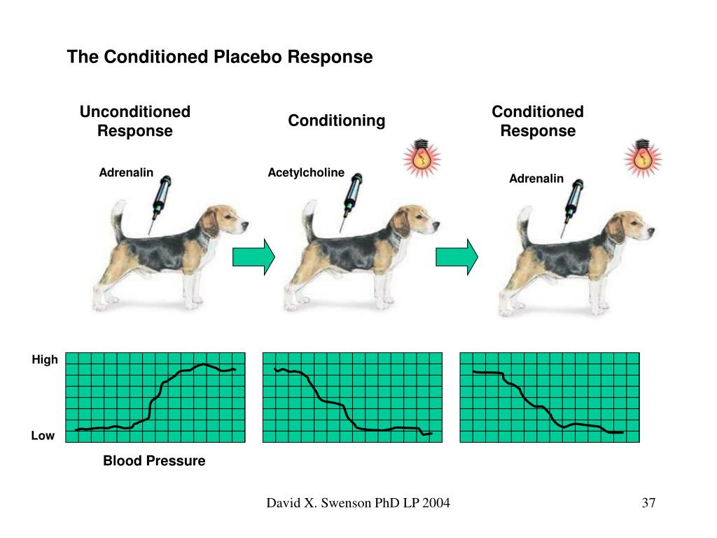 The Conditioned Placebo Response