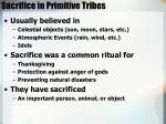 sacrifice in primitive tribes
