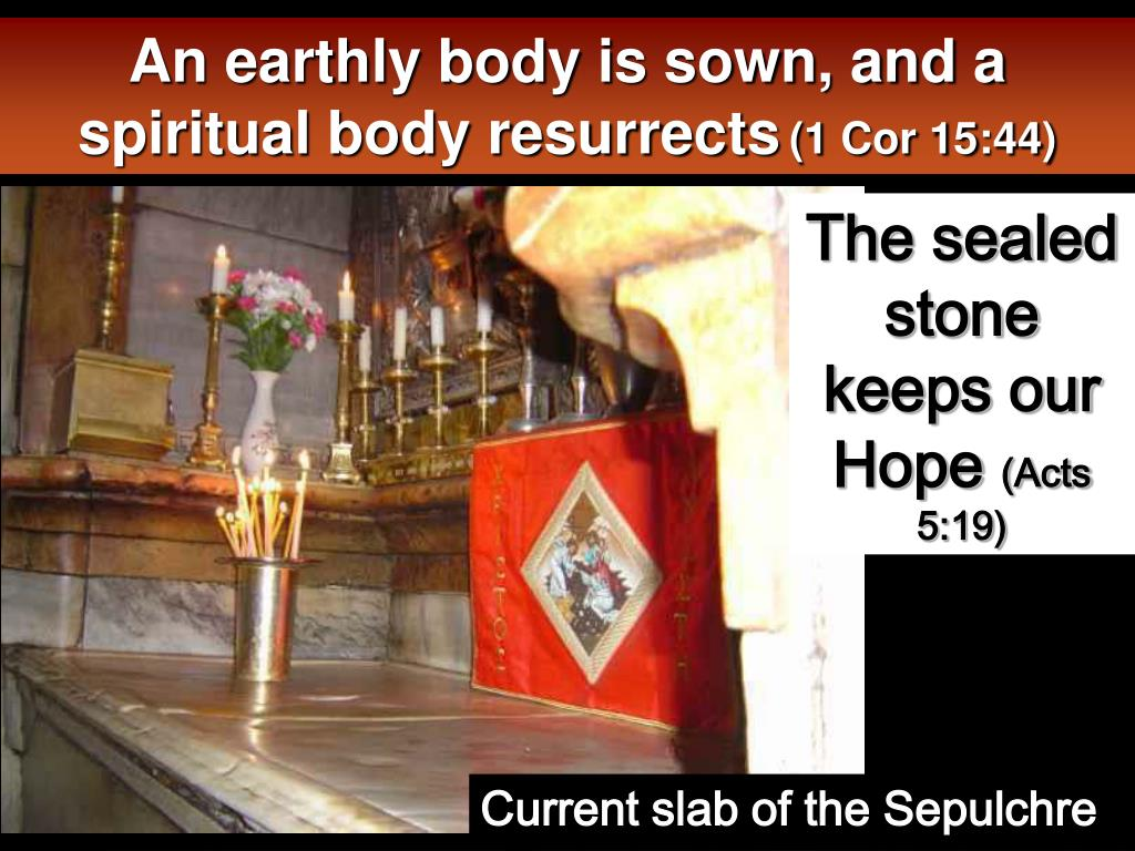 An earthly body is sown, and a spiritual body resurrects