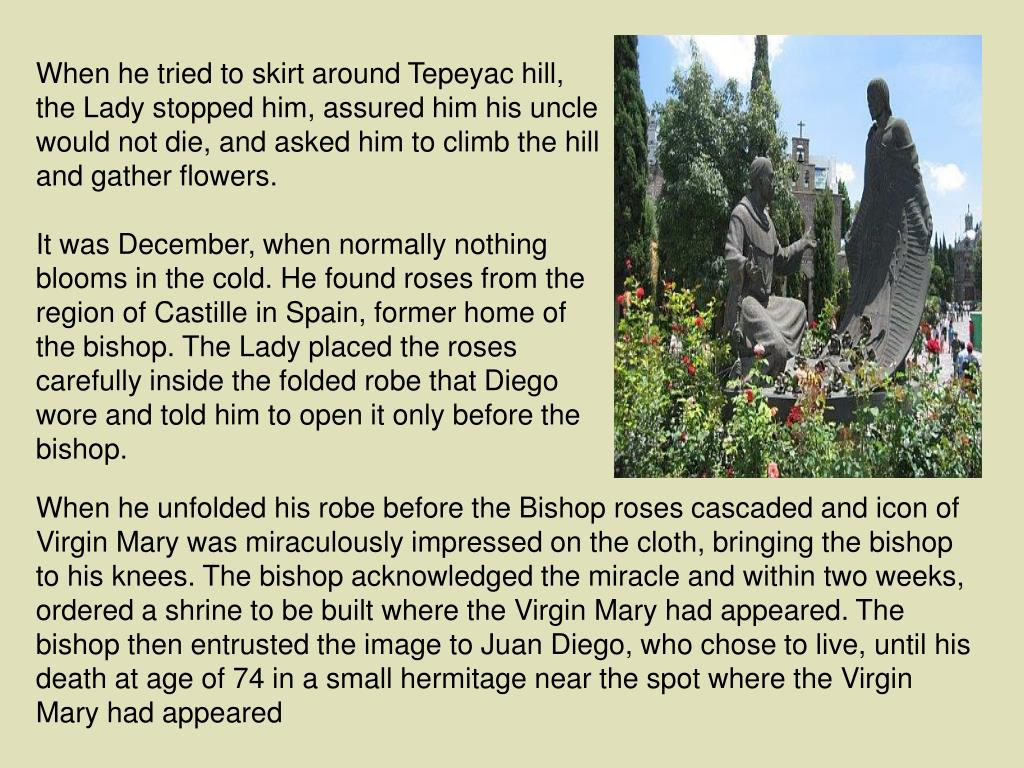 When he tried to skirt around Tepeyac hill, the Lady stopped him, assured him his uncle would not die, and asked him to climb the hill and gather flowers.
