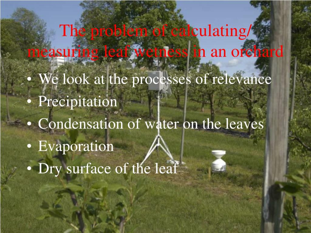 The problem of calculating/ measuring leaf wetness in an orchard