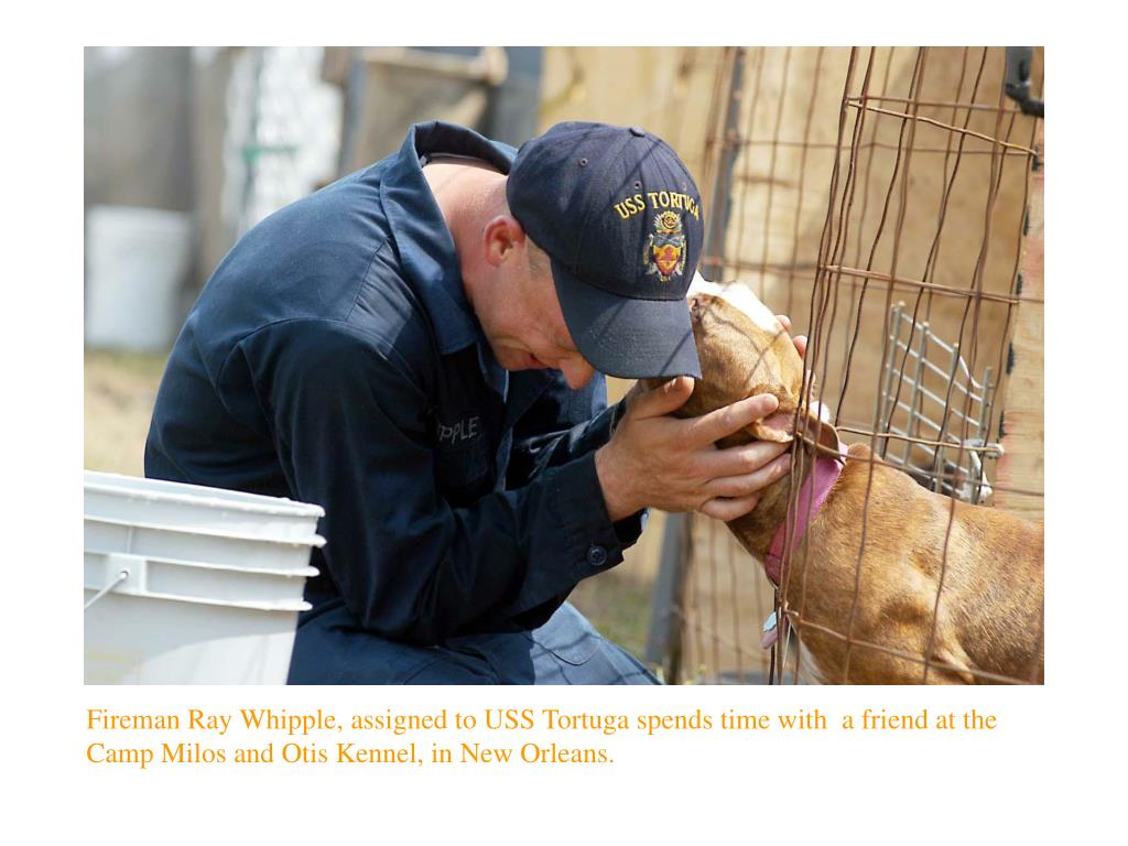 Fireman Ray Whipple, assigned to USS Tortuga spends time with  a friend at the Camp Milos and Otis Kennel, in New Orleans.