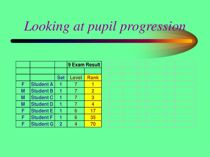 Looking at pupil progression