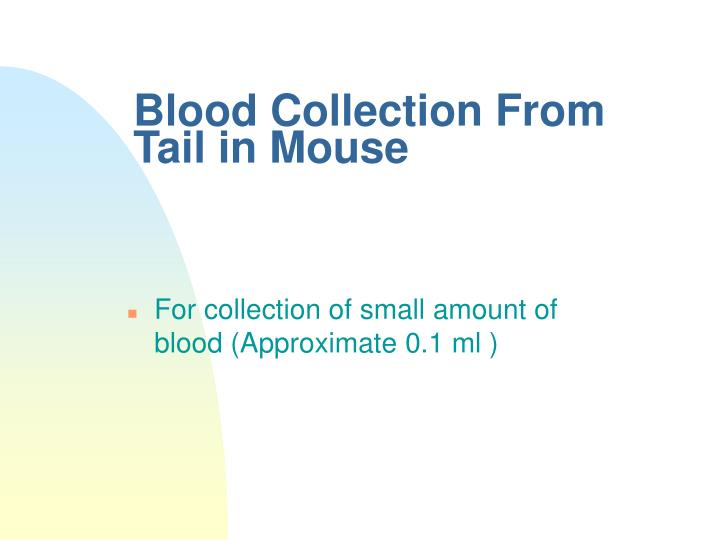 Blood Collection From Tail in Mouse