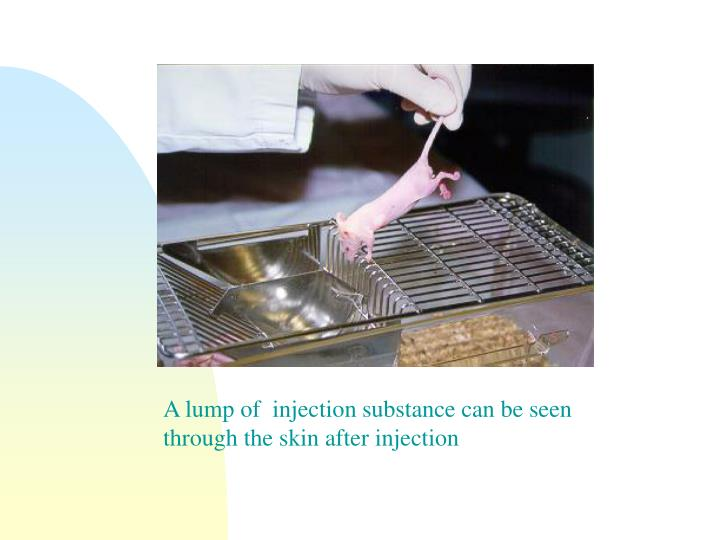 A lump of  injection substance can be seen through the skin after injection