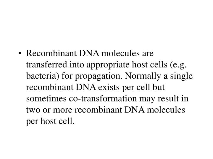 Recombinant DNA molecules are transferred into appropriate host cells (e.g. bacteria) for propagation. Normally a single recombinant DNA exists per cell but sometimes co-transformation may result in two or more recombinant DNA molecules per host cell.