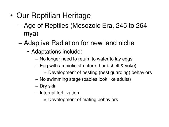 Our Reptilian Heritage