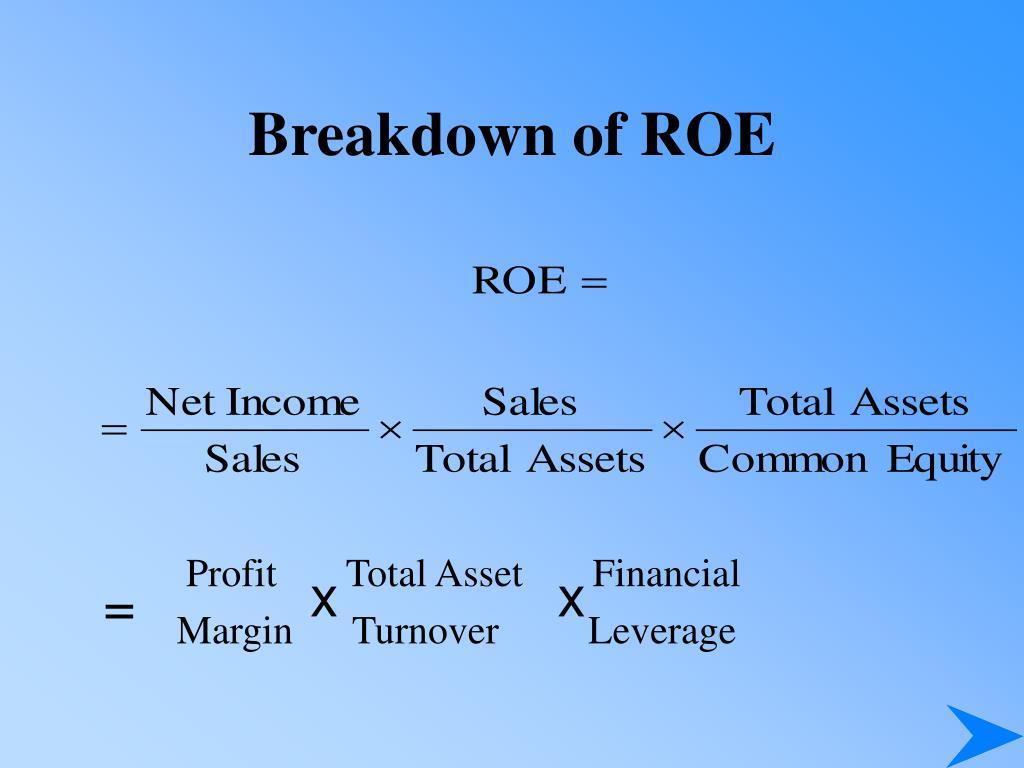 Profit       Total Asset       Financial