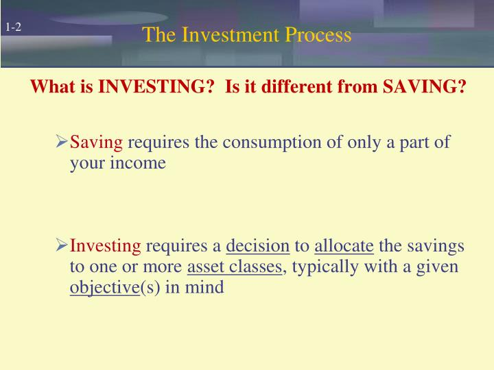 The investment process l.jpg