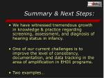 summary next steps