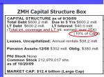 zmh capital structure box