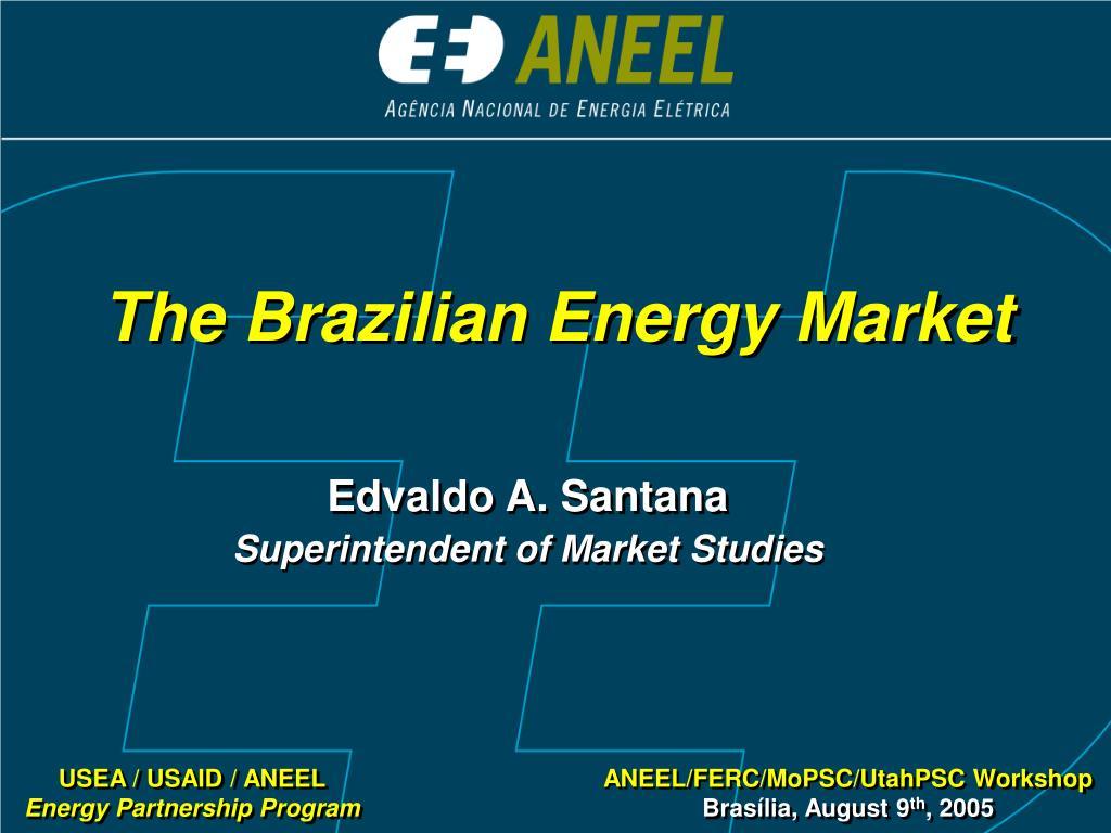 The Brazilian Energy Market