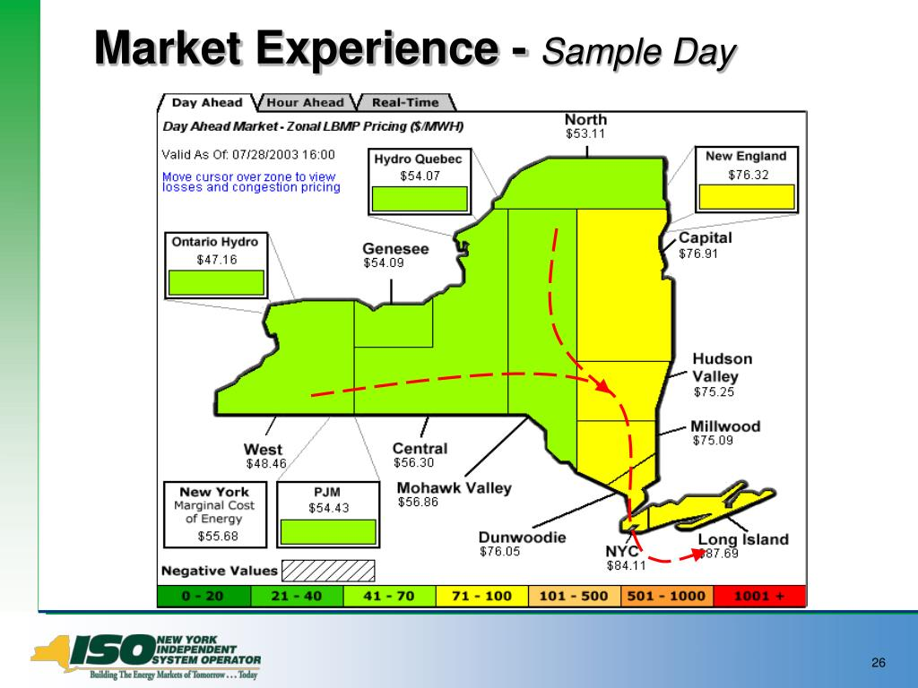 Market Experience -