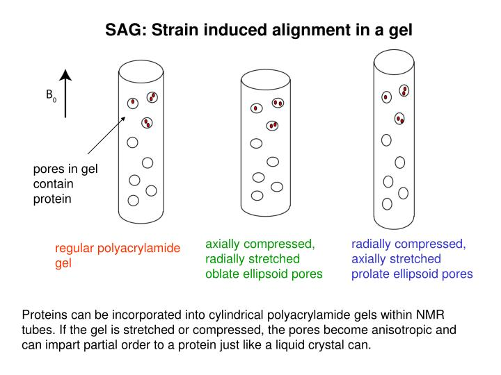 SAG: Strain induced alignment in a gel