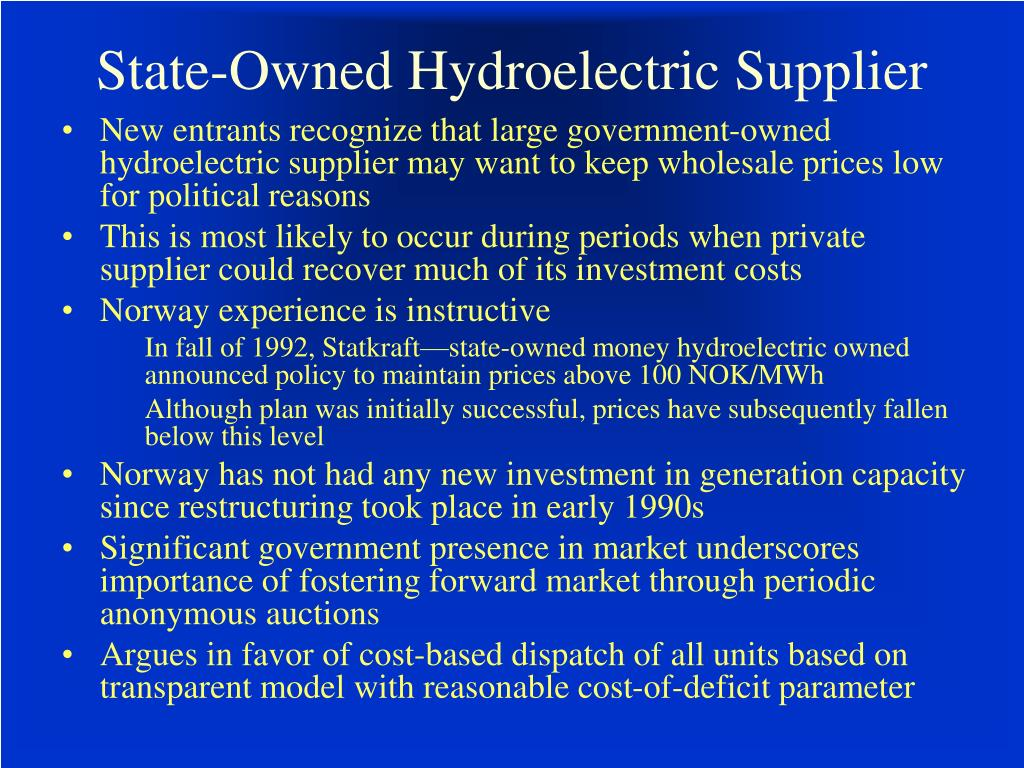 State-Owned Hydroelectric Supplier